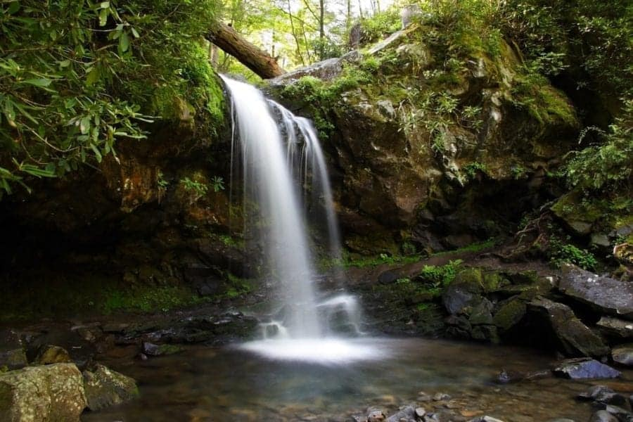 4 smoky mountain waterfalls that you absolutely need to see grotto falls grotto falls one of the top smoky mountain waterfalls altavistaventures Images