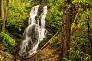 cataract falls in the great smoky mountains